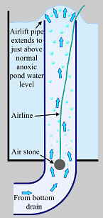 Anoxic filtration - airlift
