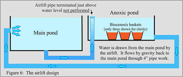Anoxic filtration - airlift design